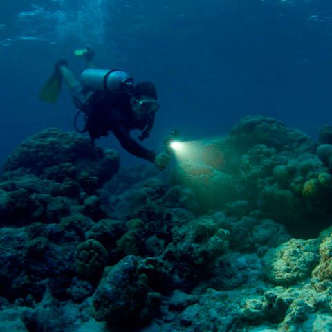 Luce a led subacquea per GoPro