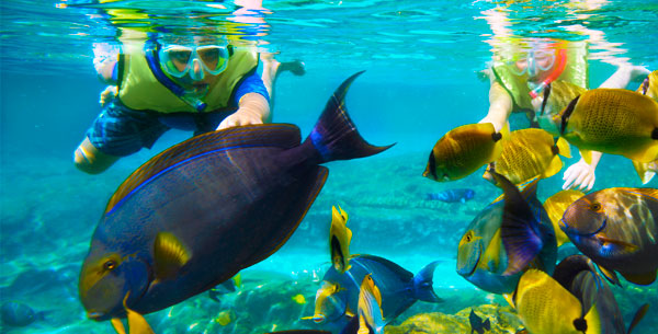 gopro snorkeling