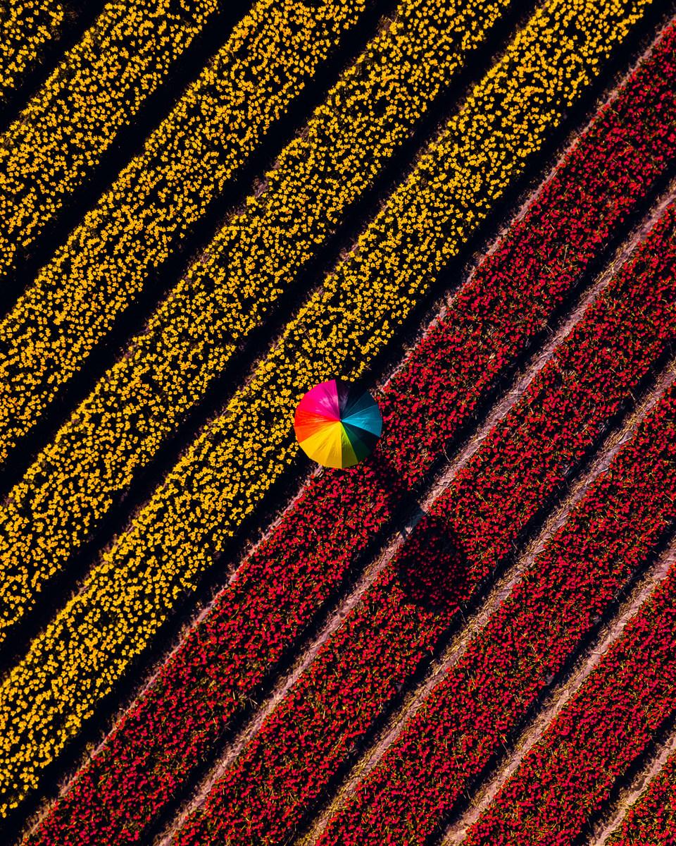 foto-primavera-drone-dji-6