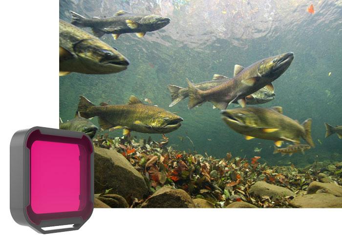PolarPro Filtro Magenta per Case GoProt