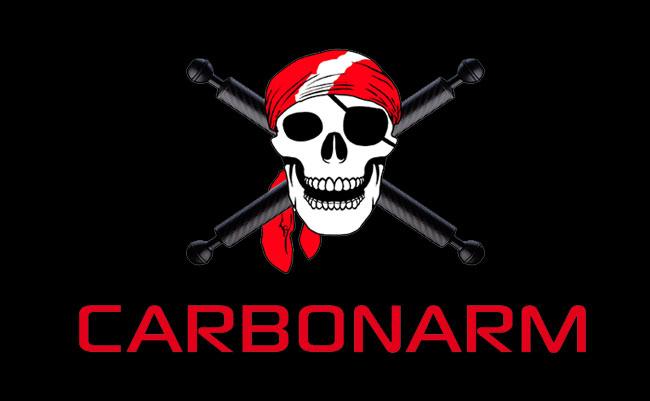 carbon arm