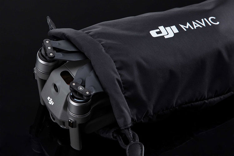DJI custodia per Mavic 2